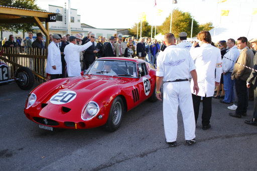 Goodwood paddock