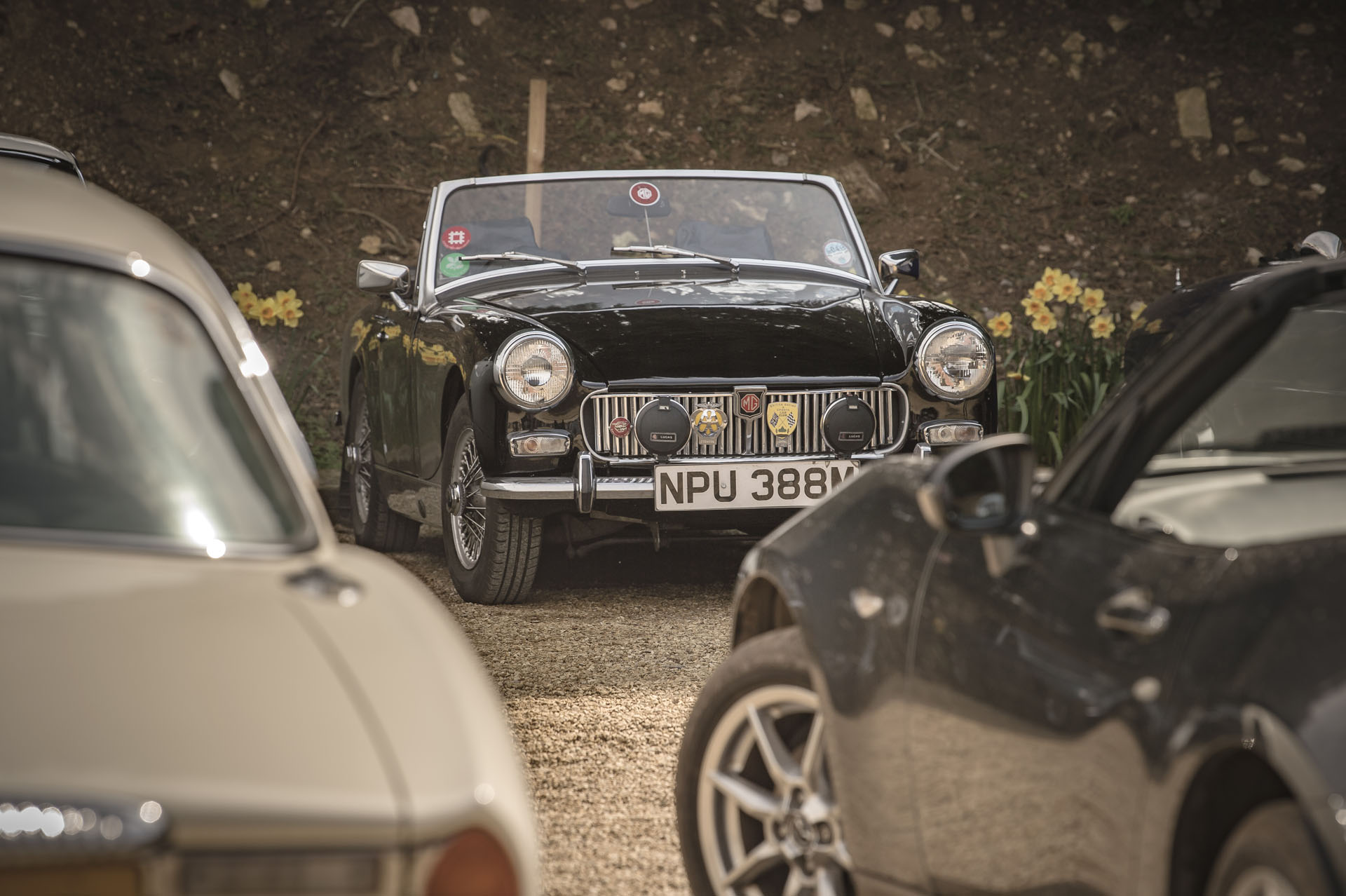 Black MG Midget