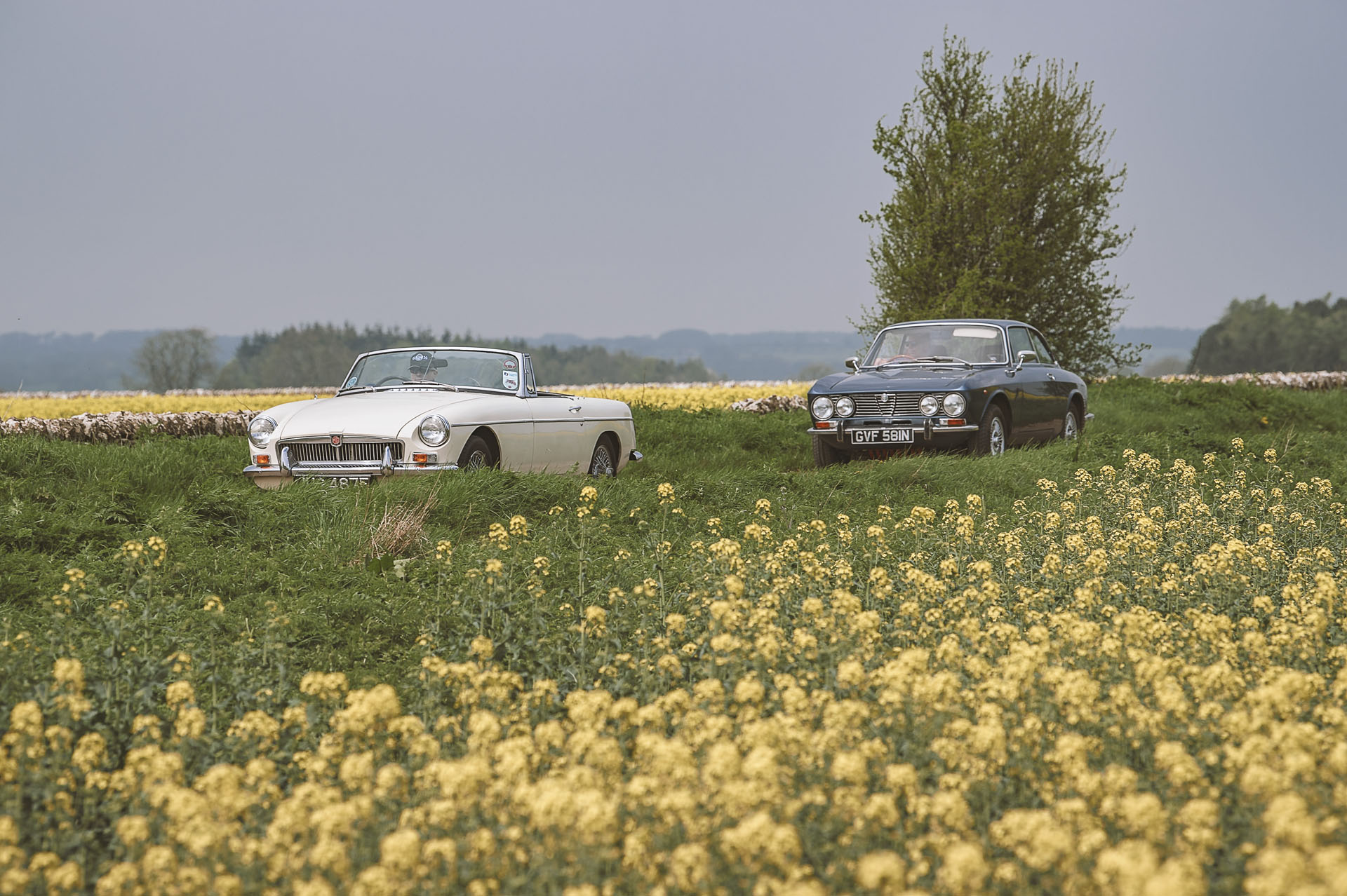MGB followed by a 1974 Alfa Romeo