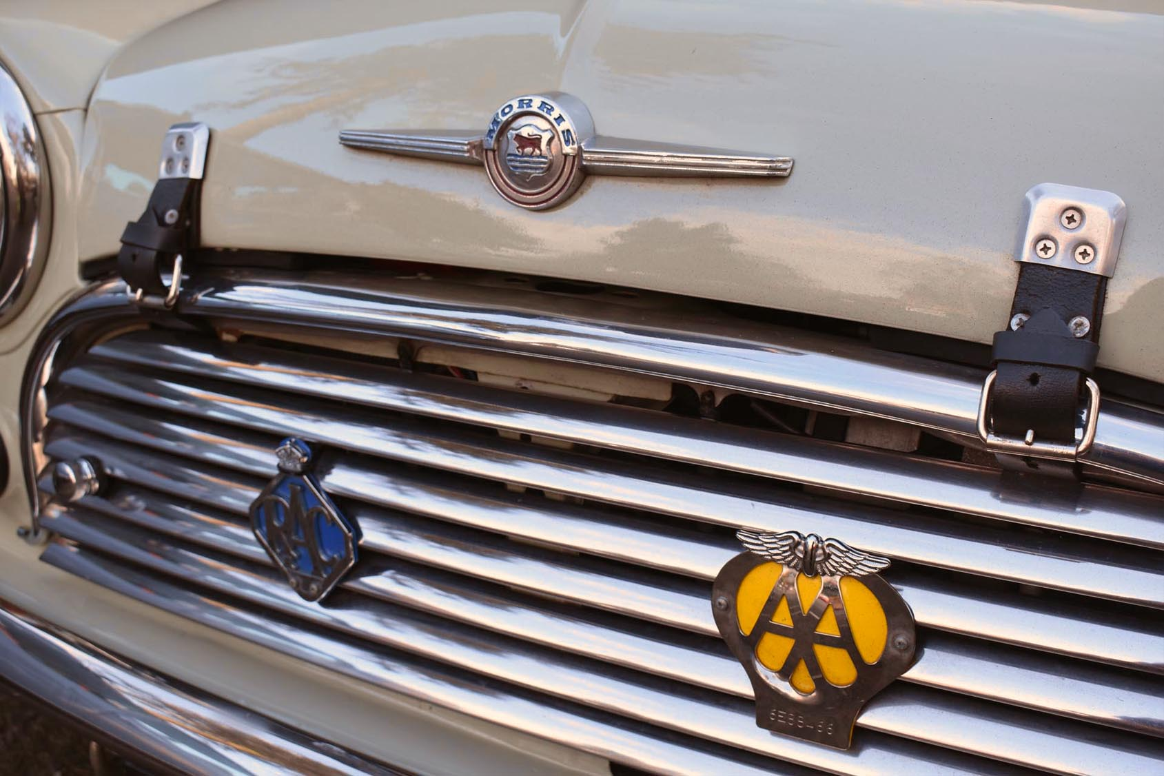 Morris Grille and Badges.jpg