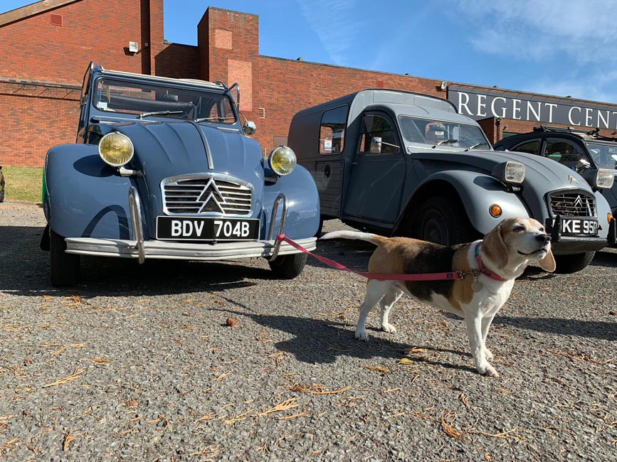 Citroen 2CV AZAM featuring Beagle